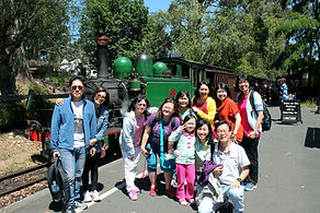 墨爾本, 墨爾本一日遊, 墨尔本一日游, Melbourne Day Tour Chinese, Melbourne Day Tours, Melbourne Local Tour, Melbourne Chinese Tour,