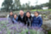 墨爾本 local tour, Melbourne Chinese Tour, Melbourne Chinese Day Tour, Melbourne Cantonese Day Tour, Melbourne Local Tour, Melbourne day tour, Melbourne day tours, Puffing Billy, 墨爾本旅遊團,