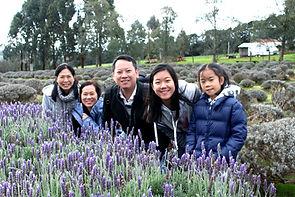 墨爾本 local tour, Melbourne Chinese Tour, Melbourne Chinese Day Tour, Melbourne Cantonese Day Tour, Melbourne Local Tour, Melbourne day tour, Melbourne day tours, Puffing Billy, 墨爾本旅遊團,