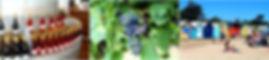 看看, 看看墨爾本旅遊團, 墨爾本旅遊, 墨爾本一日遊, 薰衣草农场,草莓农场,野生动物园,