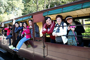 KK Melbourne tours, Melbourne Chinese Tour, Melbourne Chinese Day Tour, Melbourne Cantonese Day Tour, Melbourne Chinese Tour, Melbourne Chinese Day Tour, Melbourne day tour, Melbourne day tours, Puffing Billy, KK墨爾本旅遊團,