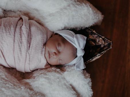 Newborn & 1 Year