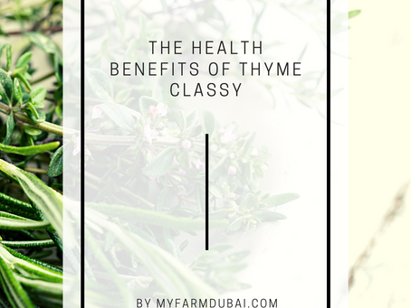 The health benefits of thyme