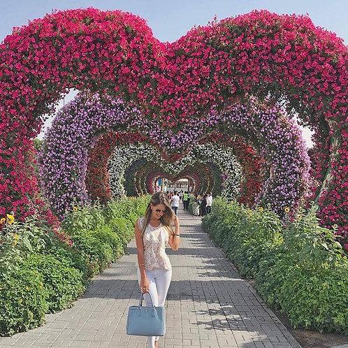 Billet pour Miracle + Butterfly Garden à Dubai - option avec transport