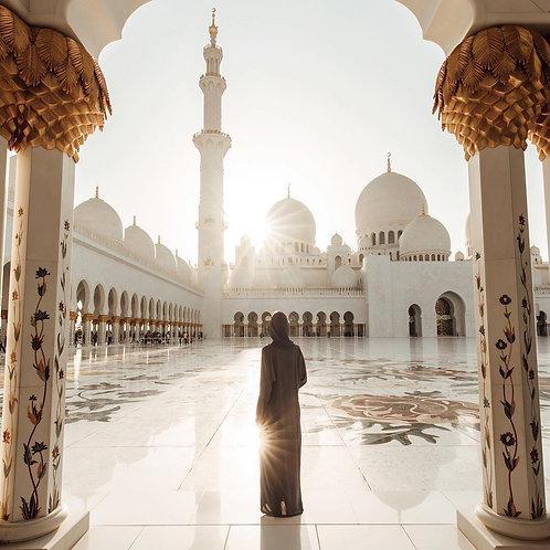Visite de la Grande mosquée d'Abu Dhabi avec Transport privé depuis Dubai