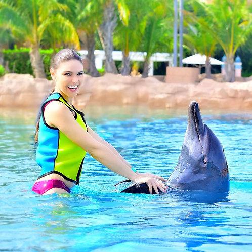 Rencontre avec les dauphins à L'atlantis + journée à l'Aquaventure