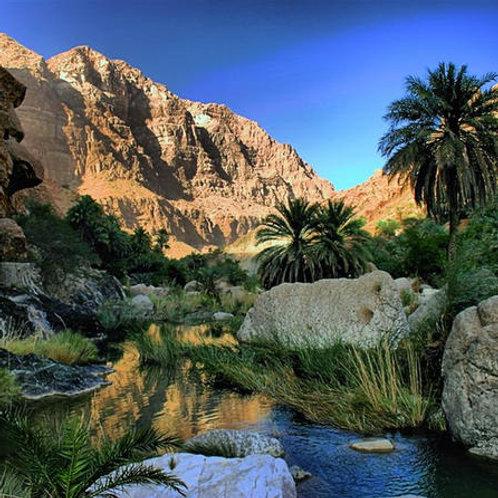 Visite du Wadi Bani Awf , Jebal al Akhdarm, Bilad Sayt, Thowara springs,..à Oman