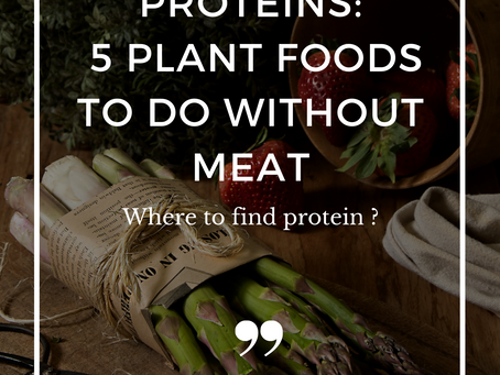 Proteins: 5 plant foods to do without meat