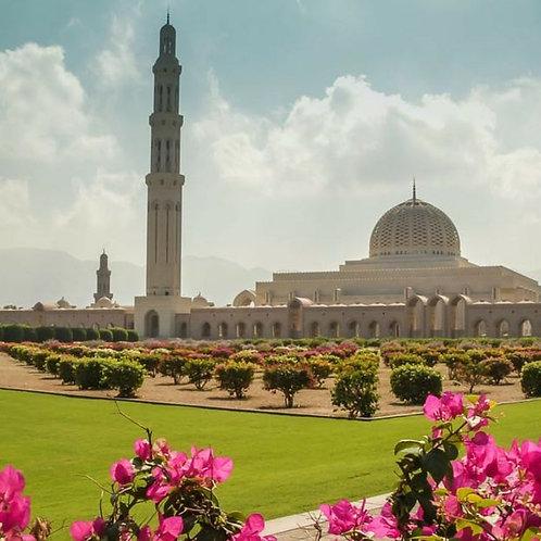 Visite de Mascate à Oman, transport + Visite mosquée Qaboos, Souq, Museum, Forts