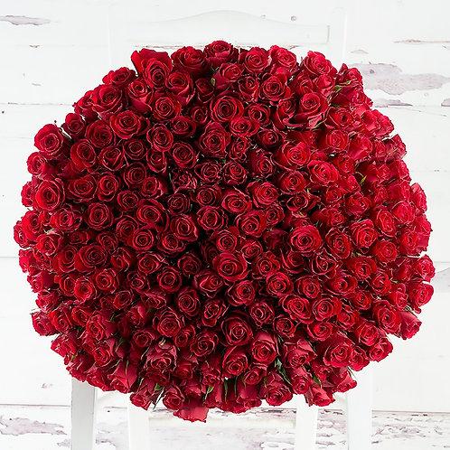 Bouquet de 200 Roses  livré à Dubai