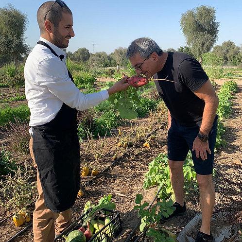 Visite Privative d'une ferme 100% bio à Dubai ( en Français ), Dégustation