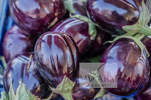 Organic Eggplant Seeds