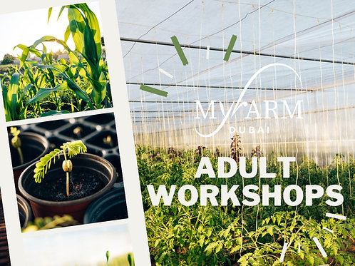Adult Workshops at our Farm in Dubai