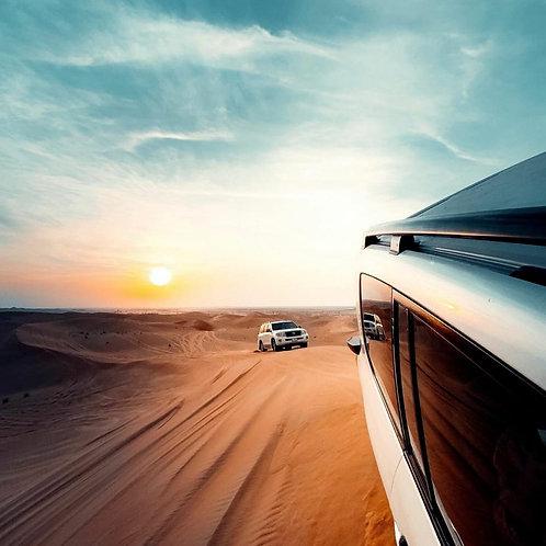 Safari Privé à Dubai + Buggy + Transport + Lunch ou Dinner