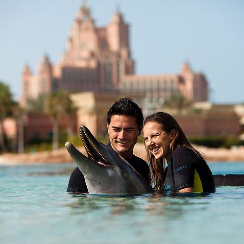 Nage avec les dauphins  L'atlantis + journée à l'Aquaventure + Plage