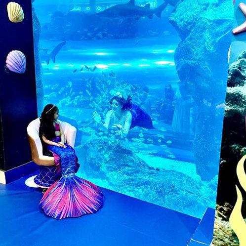 Transformez -vous en Sirene à Dubai ( + 6 mois ), Anniversaire