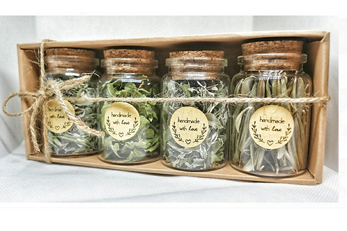 Discovery box 4 plants for infusions