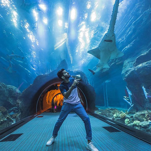 Visite de L'aquarium + Underwater à Dubai Mall  , Pass explorer