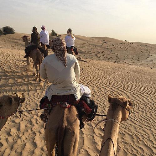 Balade en dromadaire et visite d'une ferme en plein désert de Dubai