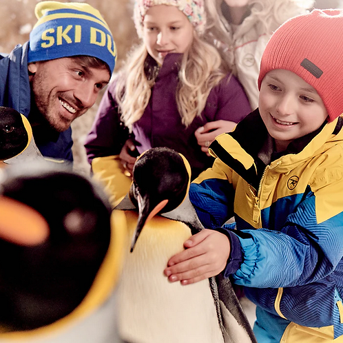 Billets pour Snow Park Ski Dubai + 2h de ski +Lesson ski ou Rencontre pingouins
