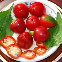 sweet red cherry pepper.jpg