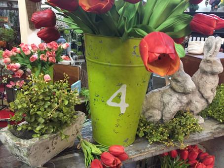 Spring Market Update