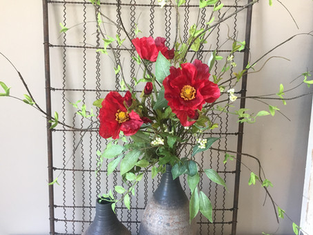 Poppies Are Perfect for Summer