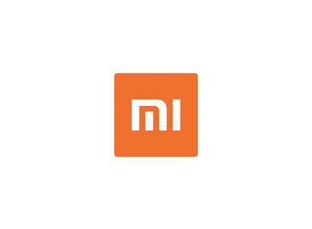 Success Story - Xiaomi