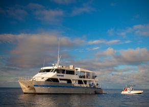 PRODUCT AWARENESS: Nomad Sportfishing Chooses Simrad Yachting