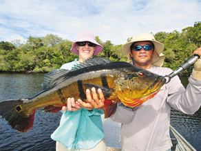NOMAD SPORTFISHING TRAVEL & OUTFITTER SERVICE