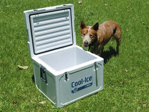 WAECO COOL-ICE BOXES