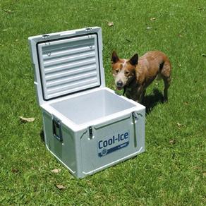 WAECO COOL-ICE BOXES