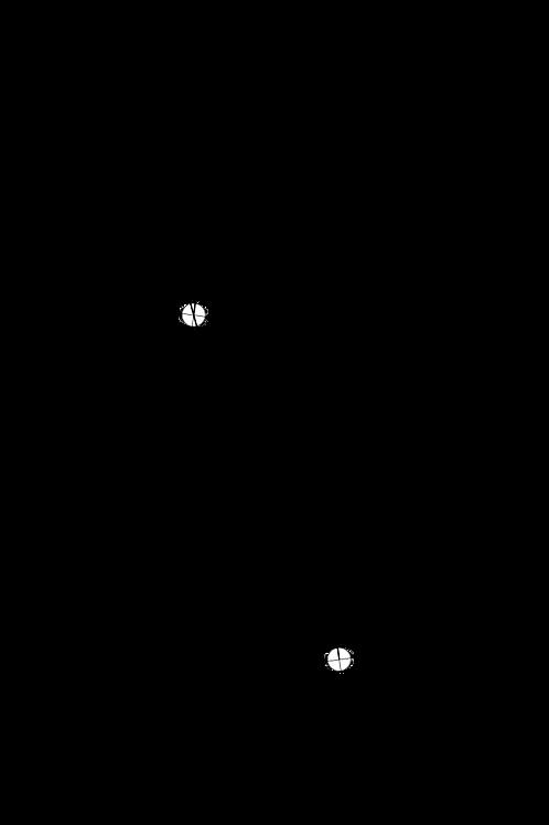 Cartridge Arc Protractor for Micro Seiki MA-77 and MA-101 tonearms