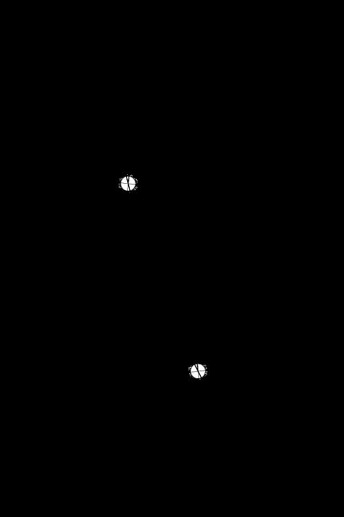 Arc Protractor for Denon DP59L DP59M DP60L DP60M DP67L DP72L DP790 + others