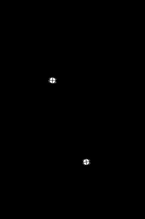Arc Protractor for Ortofon AS309i RMA309i RMG309i RKG309 RMG309 Limited