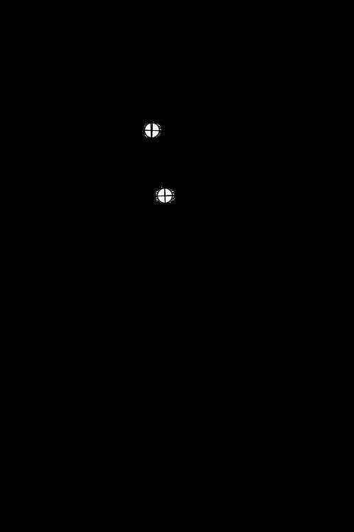 Cartridge Arc Protractor for SAEC WE-308L tonearm