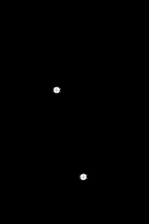 "Cartridge Arc Protractor for Thomas Schick 12"" tonearm"