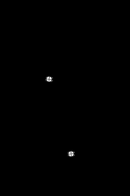 Cartridge Arc Protractor for Ortofon TA-210 tonearm
