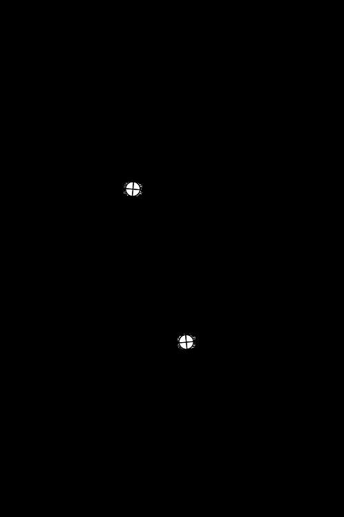 Cartridge Arc Protractor for SAEC WE-317 tonearm
