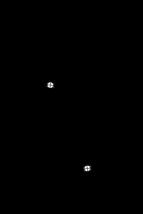 Cartridge Arc Protractor for Ortofon TA-100 and TA-110 tonearms