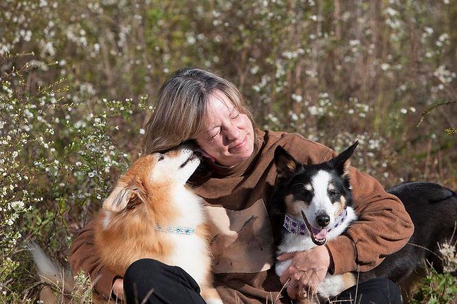 Mobile dog grooming Franklin TN, Mobile dog grooming Spring Hill TN, Mobile dog grooming Thompsons Station TN