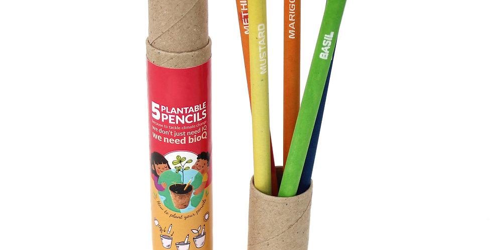 Plantable seed pencil box (5pc)
