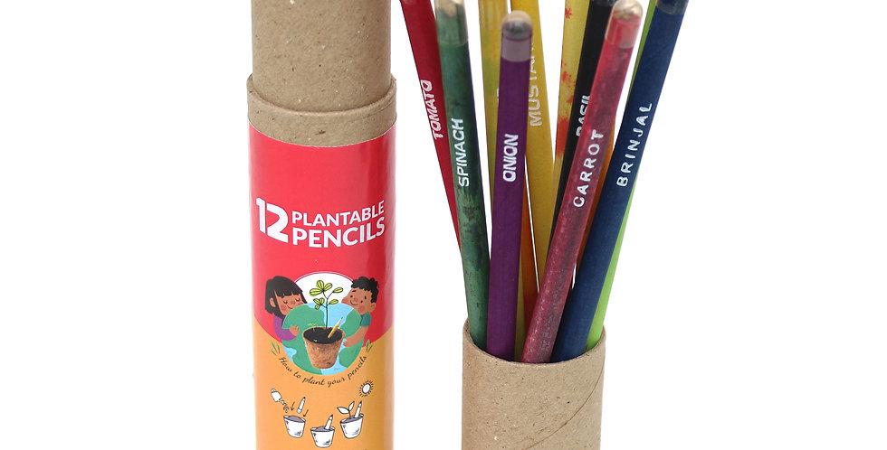 Plantable seed pencil box (12pc)