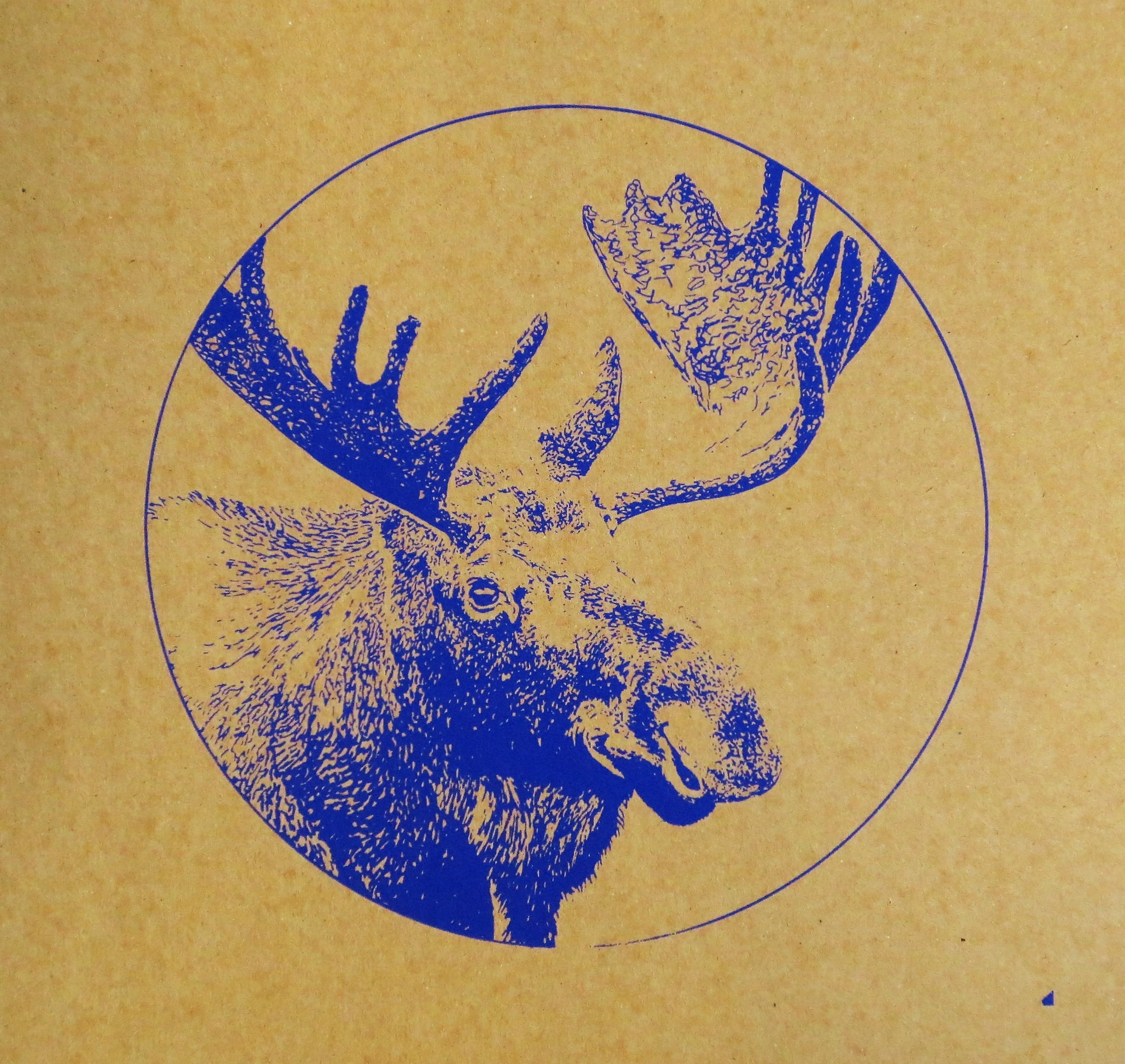moose b