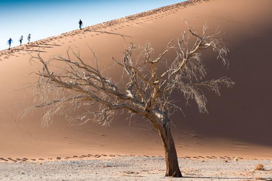 Namibia-9665.JPG