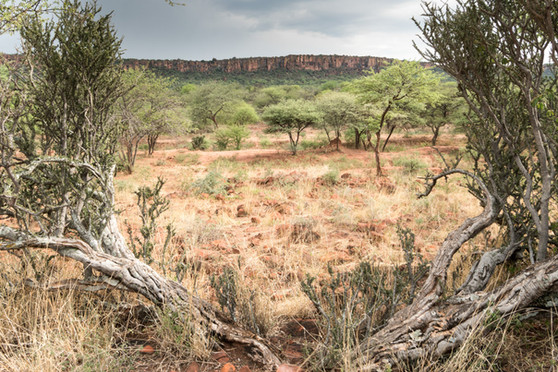 Namibia-5123.JPG