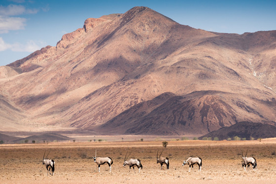 Namibia-8719.JPG