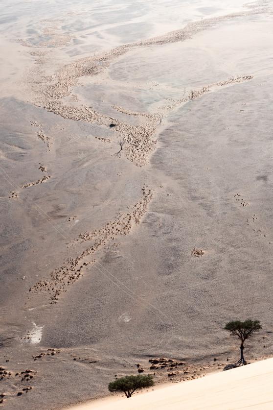 Namibia-9618.JPG