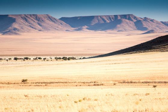 Namibia-7962.JPG