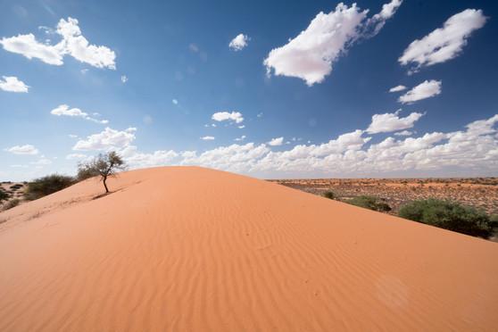 Namibia-3473.JPG